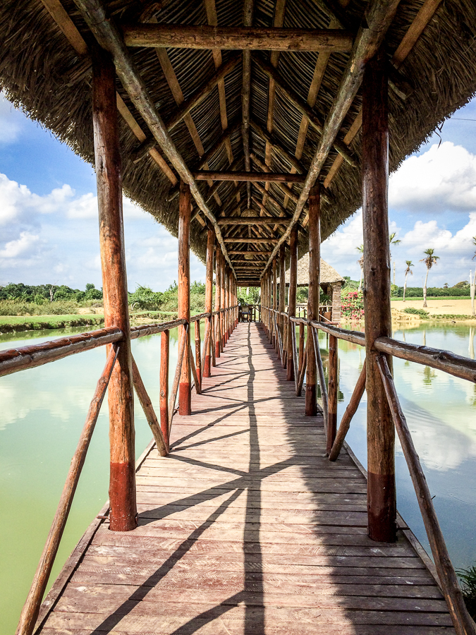 Kuba Holzsteg Bild