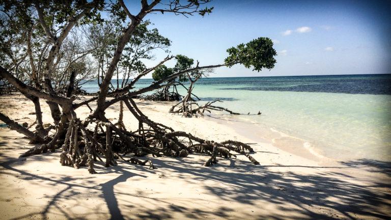 Kuba Strand Bild